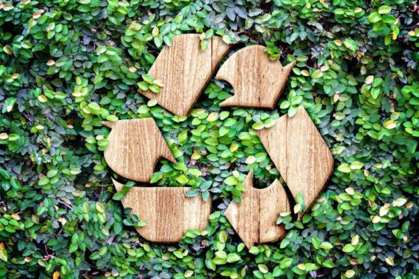 Reciclagem: práticas simples que fazem muita diferença